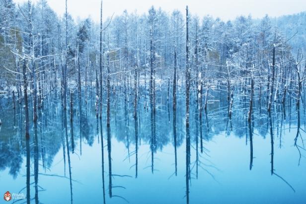 Hokkaido-monthly_5-3