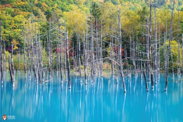 Hokkaido-monthly_5-5